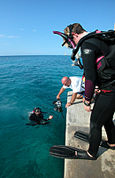 Easy shore diving at Scuba Club Cozumel
