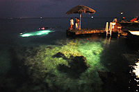 Night diving at Scuba Club Cozumel